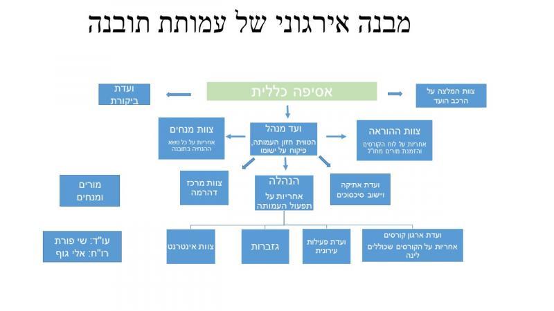 מבנה אירגוני של עמותת תובנה